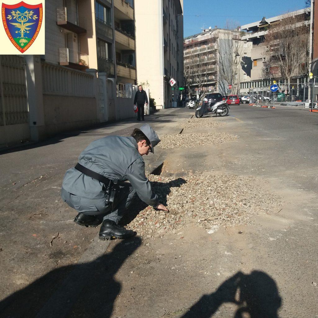 viale montegrappa controlli carabinieri alberoi abbattuti