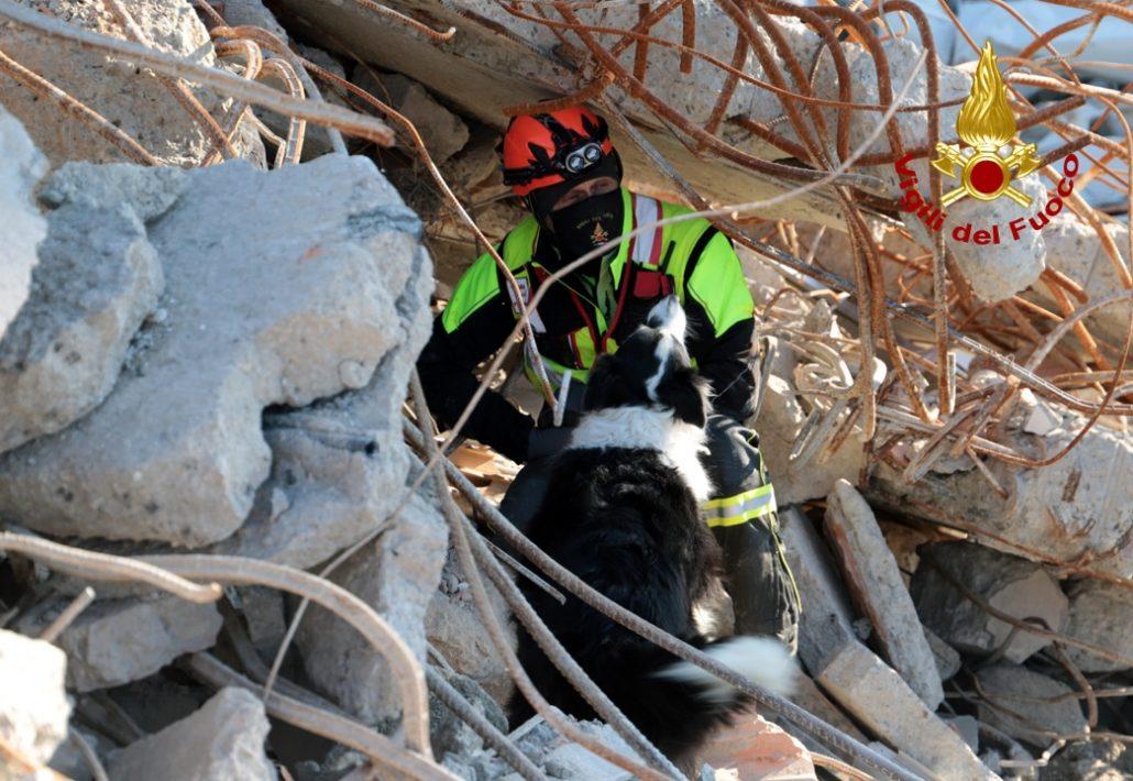 esercitazione unità cinofili vigili del fuoco a cantiere demolizione vecchio ospedale (2)