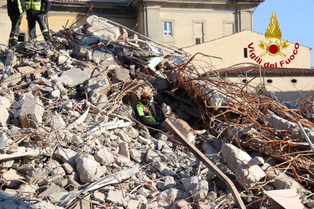 esercitazione unità cinofili vigili del fuoco a cantiere demolizione vecchio ospedale (6)