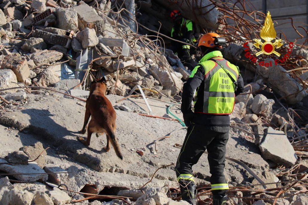 esercitazione unità cinofili vigili del fuoco a cantiere demolizione vecchio ospedale (8)